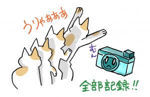 ねこ写真部5